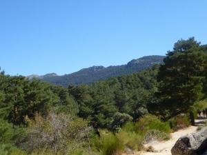 Paseo a Caballo-Cercedilla-Central de Reservas Sierra de Guadarrama
