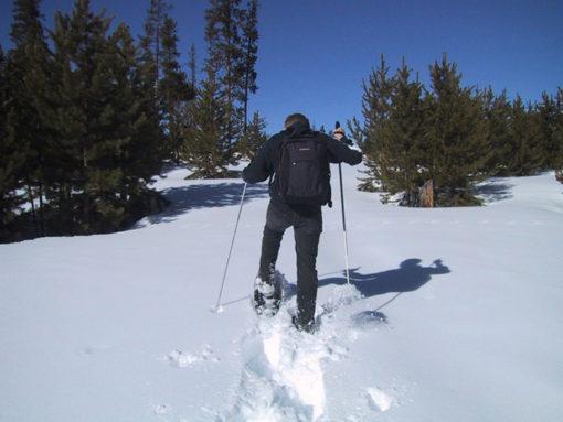 Raquetas de nieve y esquí de fondo en Madrid