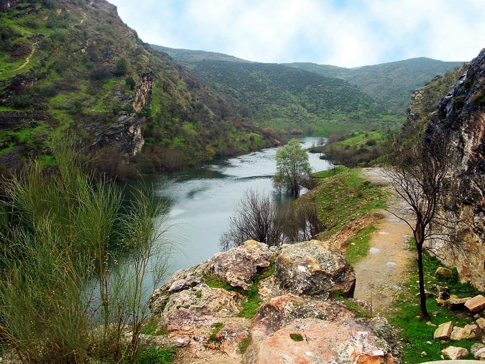 """Programa """"Abraza Tus Árboles"""". El Pontón de la Oliva y el río Lozoya"""