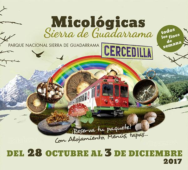 Jornadas micologicas cercedilla sierra Madrid