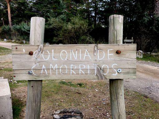 cartel colonia de Camorritos en Cercedilla