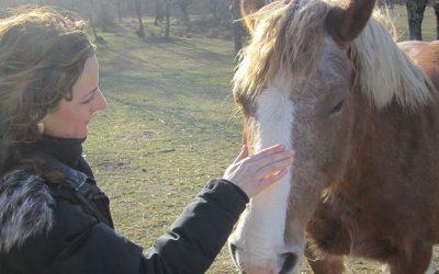 Montar a caballo es más que un placer, es un beneficio.