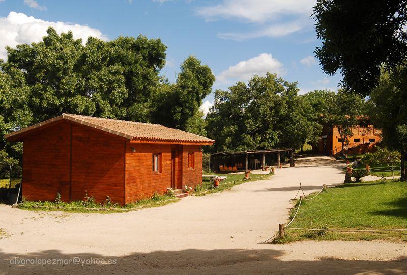 campamento de verano en El Escorial