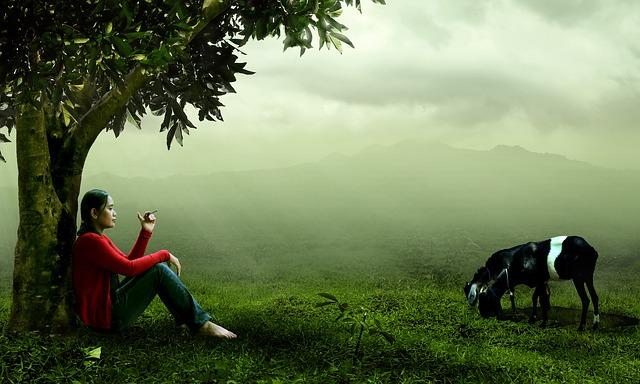 Ser pastor o pastora, un oficio ancestral que procura sostenibilidad a la naturaleza