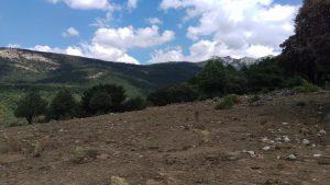 Vistas desde los Corrales de Simón del Valle del Hueco de 7 Picos- raíces de Cercedilla