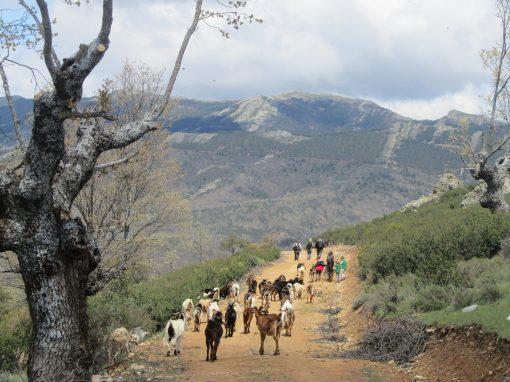 Ecoturismo Central de Reservas