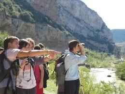 Observacion de aves en la Sierra Guadarrama