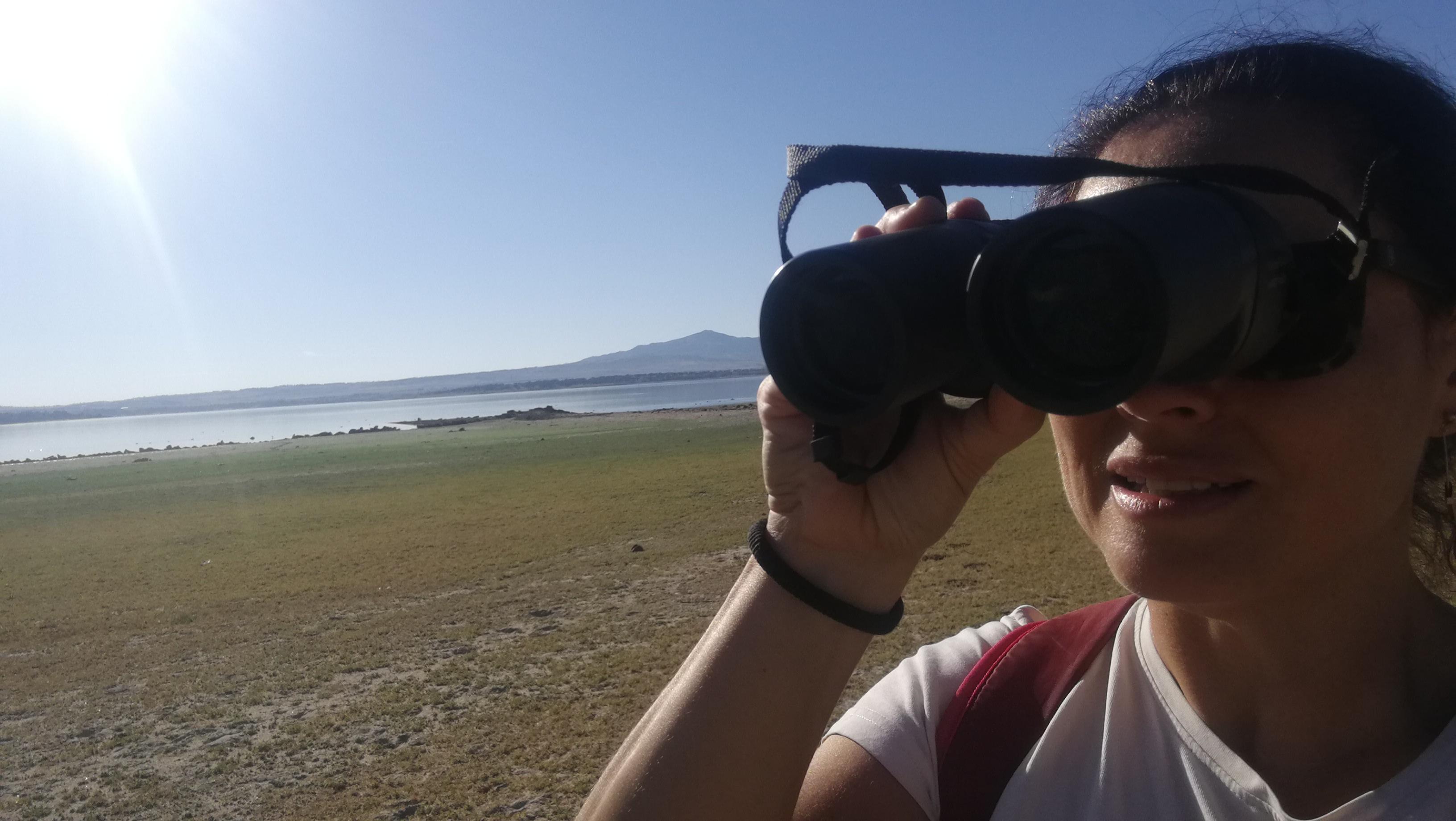 Bird Watching en la Sierra de Guadarrama