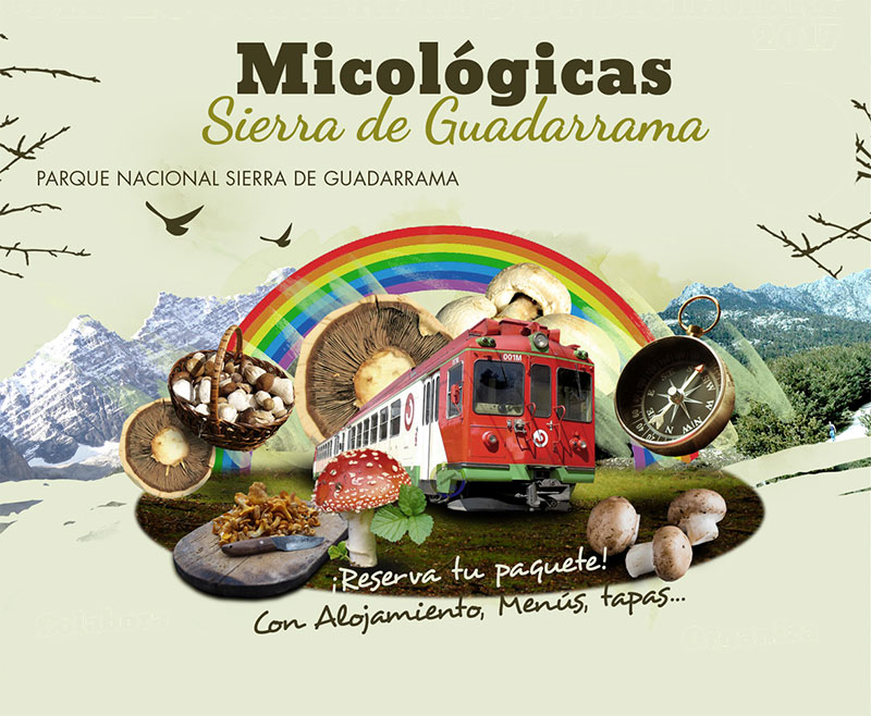 Jornadas Micologicas 2017