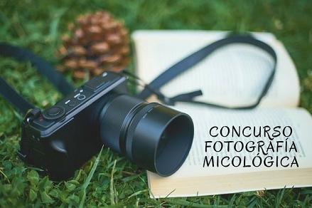 Concurso de fotografía micológica