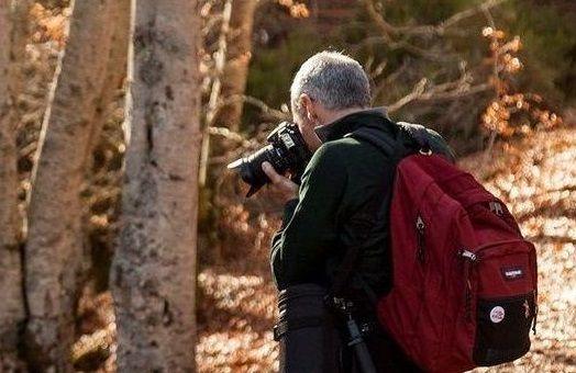Curso de Fotografía y Naturaleza en la Sierra de Guadarrama