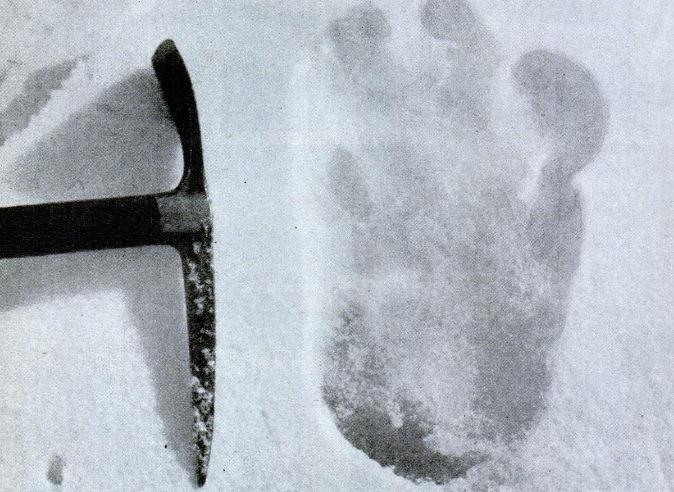 ¿Te atreverías a ir a buscar al Yeti? El mítico hombre de las nieves