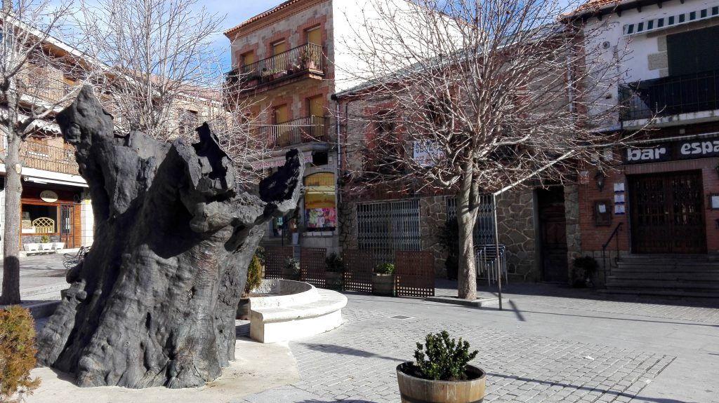 Escultura del Álamo miraflores de la Sierra Sierra de Guadarrama