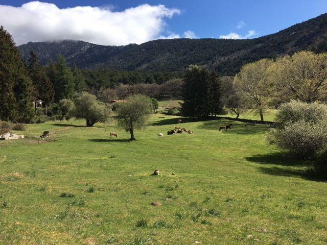 Experiencias en el Parque Nacional Sierra del Guadarrama