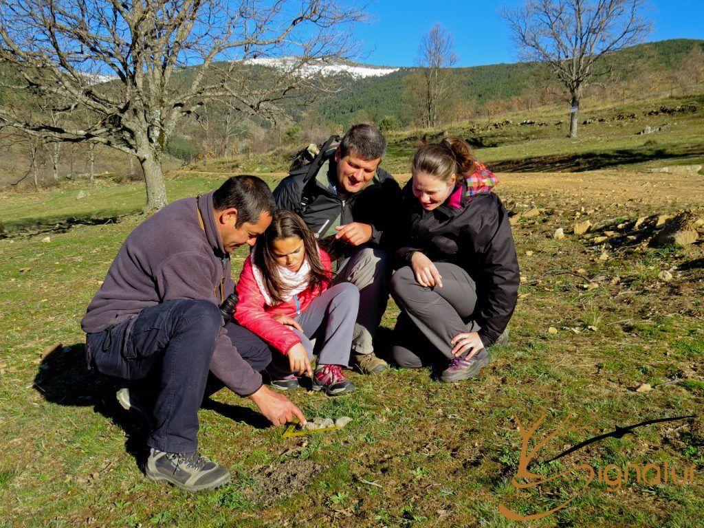 Huellas y Rastros Sierra de Madrid
