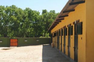 Gastronomía y Paseo a Caballo en Los Molinos Sierra