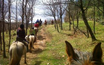 Rutas a caballo Sierra Madrid
