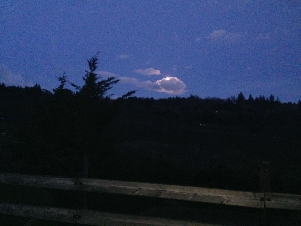 Ruta a caballo a la luz de la luna