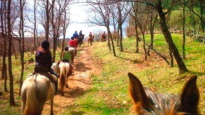 Actividades con caballos en la Sierra de Guadarrama