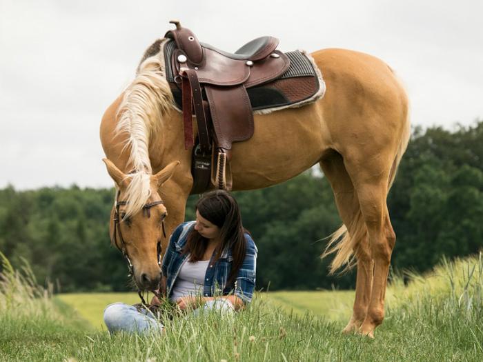 Paseo a caballo en Los Molinos Sierra Madrid