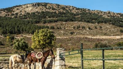 Ruta a caballo en los Molinos Sierra de Madrid