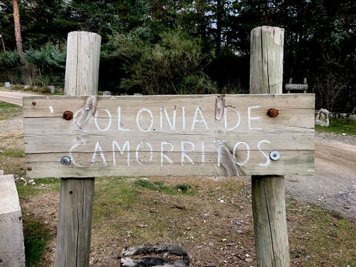 Colonia-de-camorritos-Central-de-Reservas-Sierra-del-guadarrama