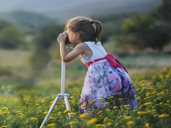 Curso de Fotografía Micológica en Manzanares El Real