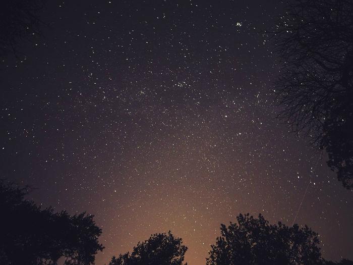 Salida Gratuita: Un Paseo por las Estrellas Sábado 6 de Julio