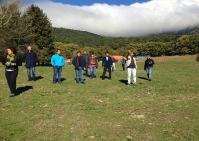 Castilla verde granja biodinamica cercedilla