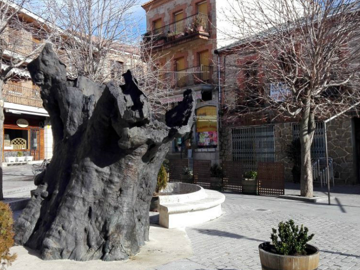 Escultura-del-Álamo-Miraflores-de-la-Sierra-Madrid-