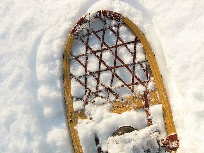 Experiencia-Raquetas-de-Nieve