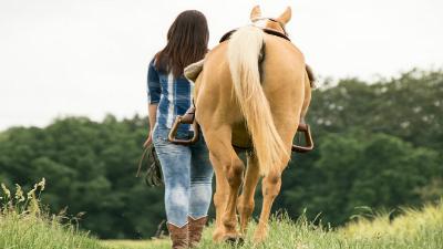 actividades con caballos en los molinos