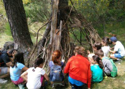 actividades para niños en la naturaleza