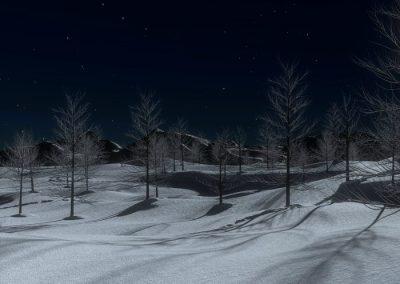 raquetas nieve nocturnas peñalara