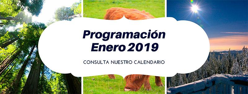 Programación-enero-2019