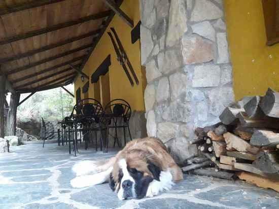 Casa Rural La posada cercedilla