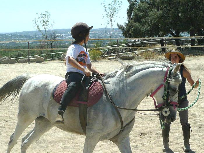 Curso de equitacion en la Sierra de Guadarrama