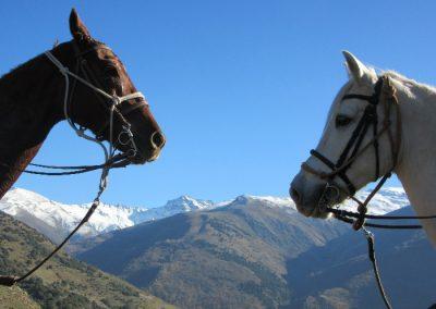 rutas a caballo cercedilla