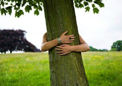 abrazando arboles en la sierra