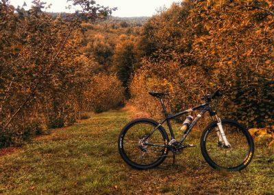 bicicleta electrica valle del Lozoya