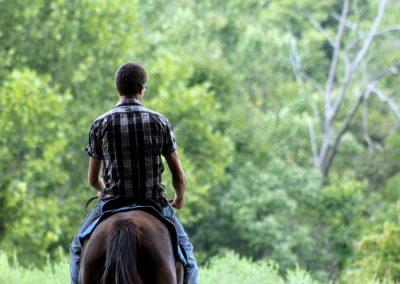 gastronomia y caballos los molinos