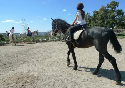 montar a caballo en la sierra