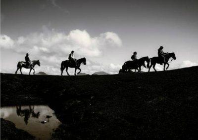 sierra de madrid con caballo bajo la luna llena