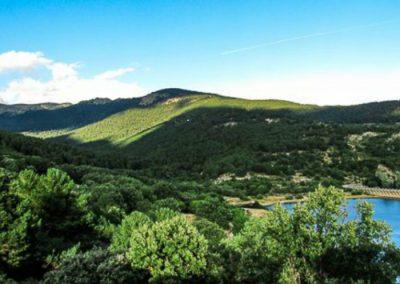 Raices-de-Cercedilla-Ruta-Sierra-de-Madrid