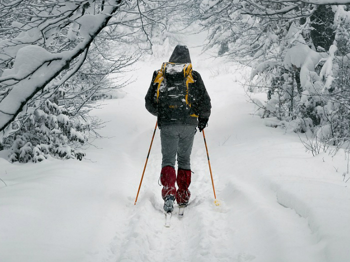 *Especial Días Sin Cole * Curso de Esquí de Fondo