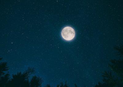 naturaleza nocturna en la sierra