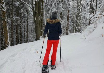 raquetas de nieve en cotos sierra