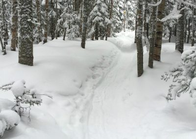 raquetas nieve madrid