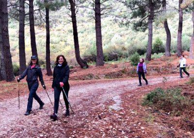 haciendo nordic walking en Madrid