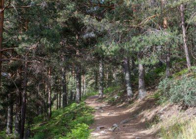 Ruta valle de la barranca